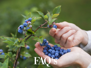 FAQ's-For-MicroSoil®