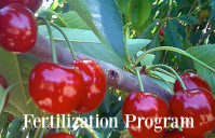 MicroSoil® TailorMade™ Fertilization Program
