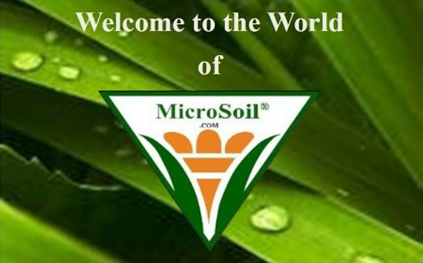 Welcome To The World of MicroSoil®