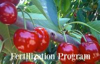 MicroSoil® TailorMade™ Fertilization Program